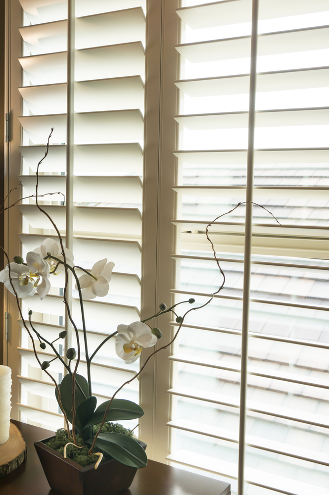 Hunter Douglas blinds Rochester NY