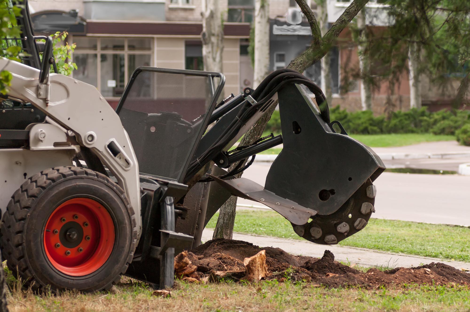 stump grinding