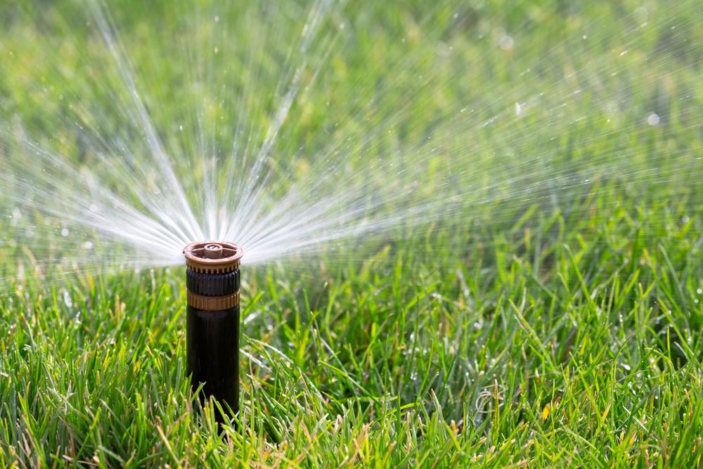 home lawn sprinkler system