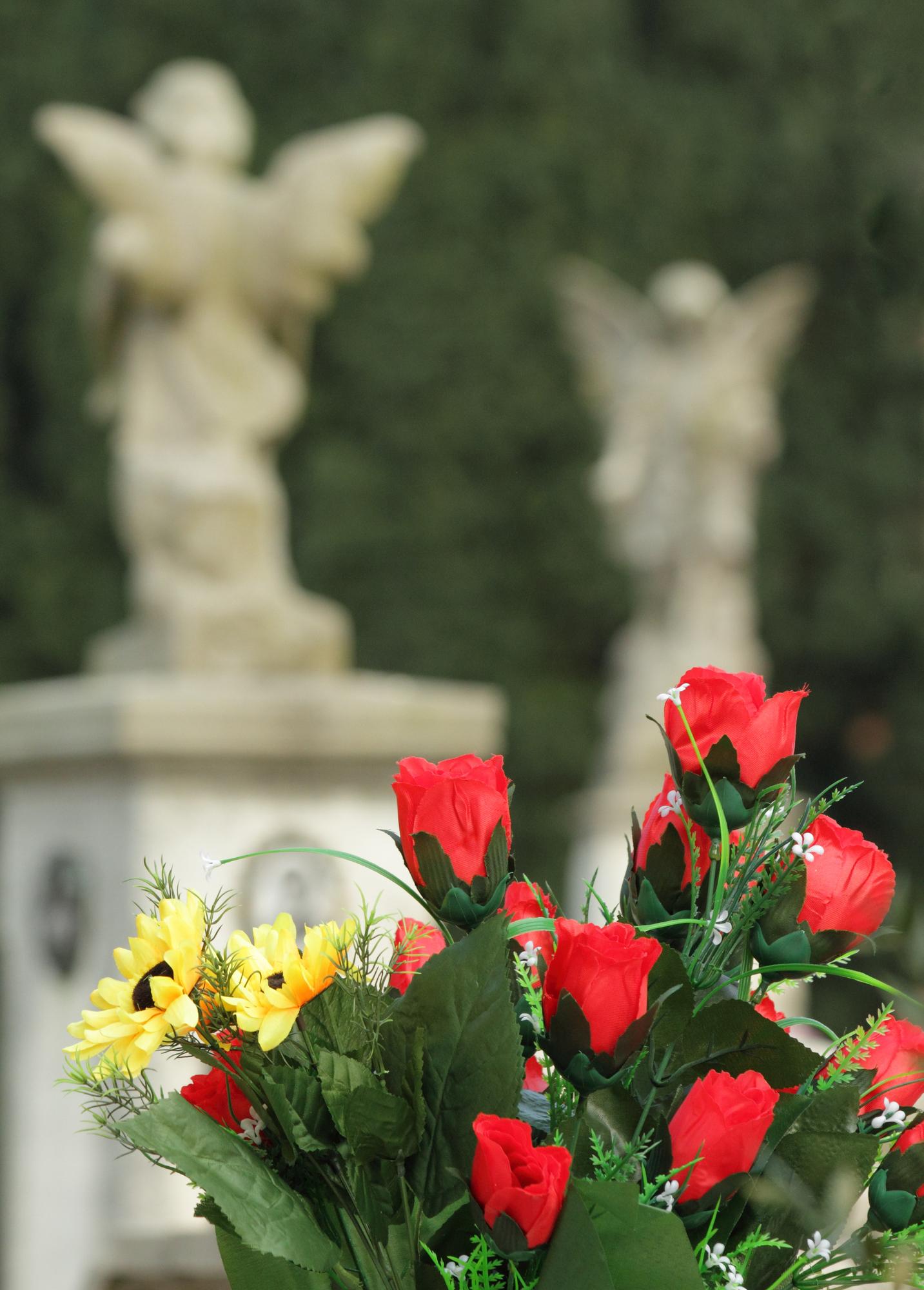 Le Roy, NY gravestone
