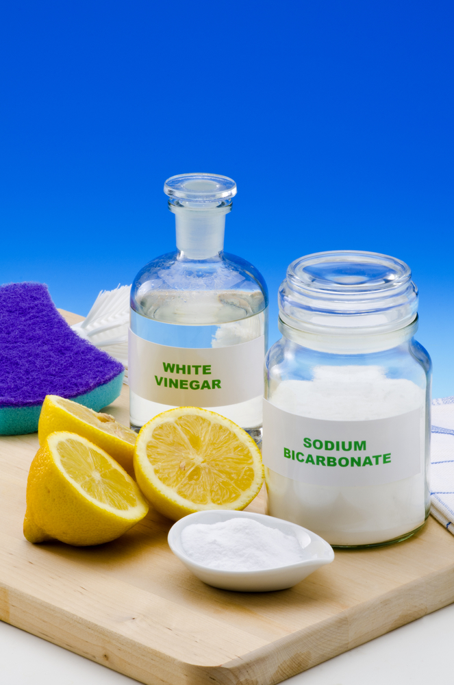 Green home cleaning 3 eco friendly products for your home for Eco friendly home products