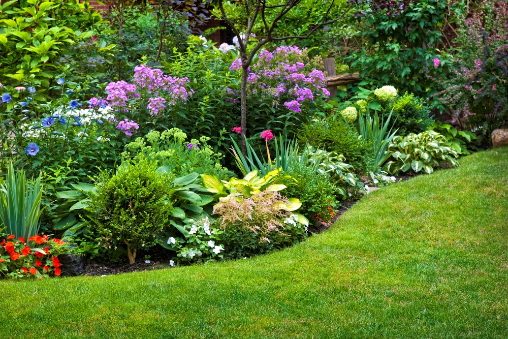 Backyard Landscaping Ideas Pictures Free easy, maintenance-free backyard landscaping ideas - wh major & sons