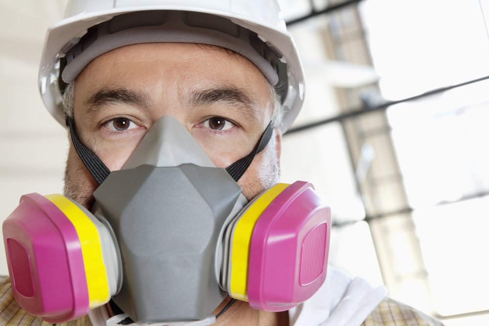 3 Reasons To Leave Mold Removal To A Professional Solid