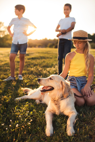 Pet insurance in Houston, MO
