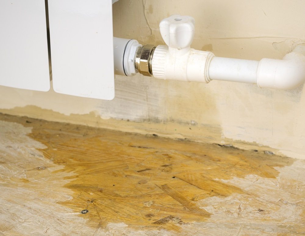 Does Homeowners Insurance Cover Mold Amp Water Damage