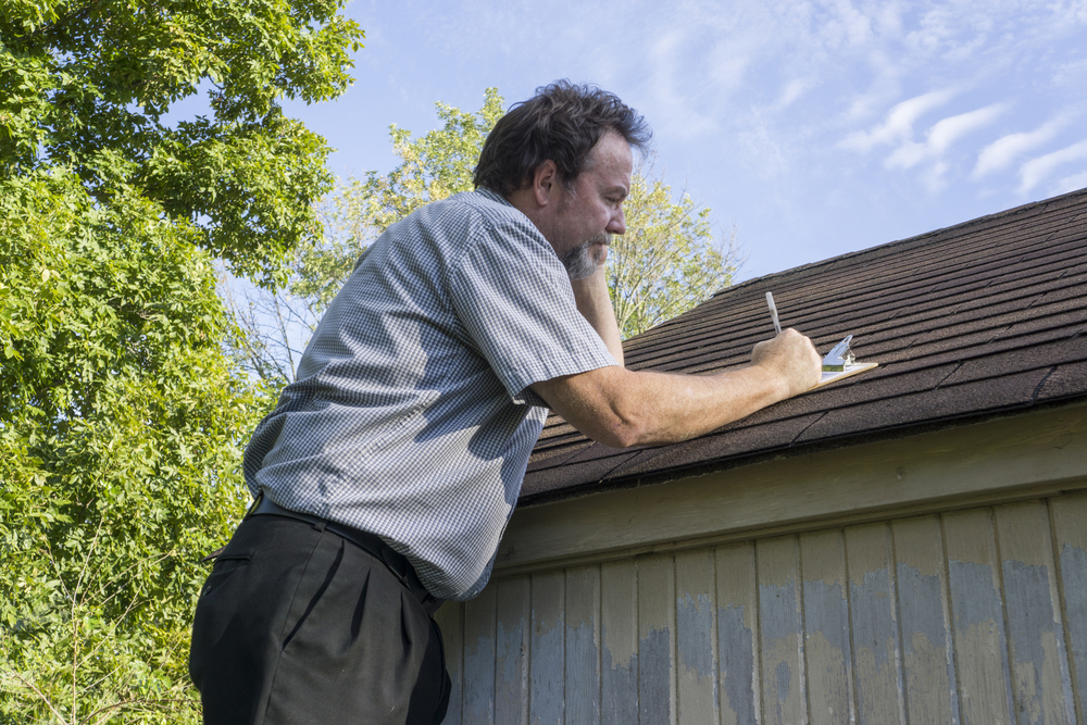 Image result for How to keep a healthy roof?