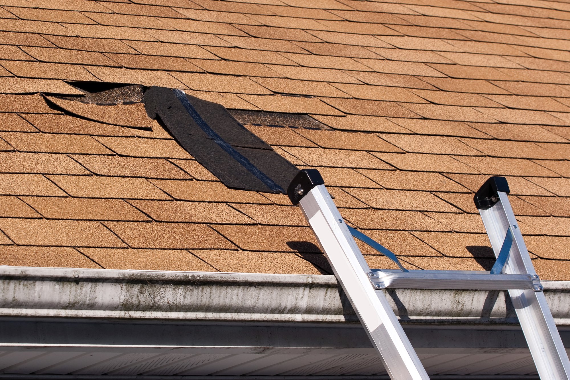 How Often Should You Inspect Your Roofing? - Tory's Roofing ...