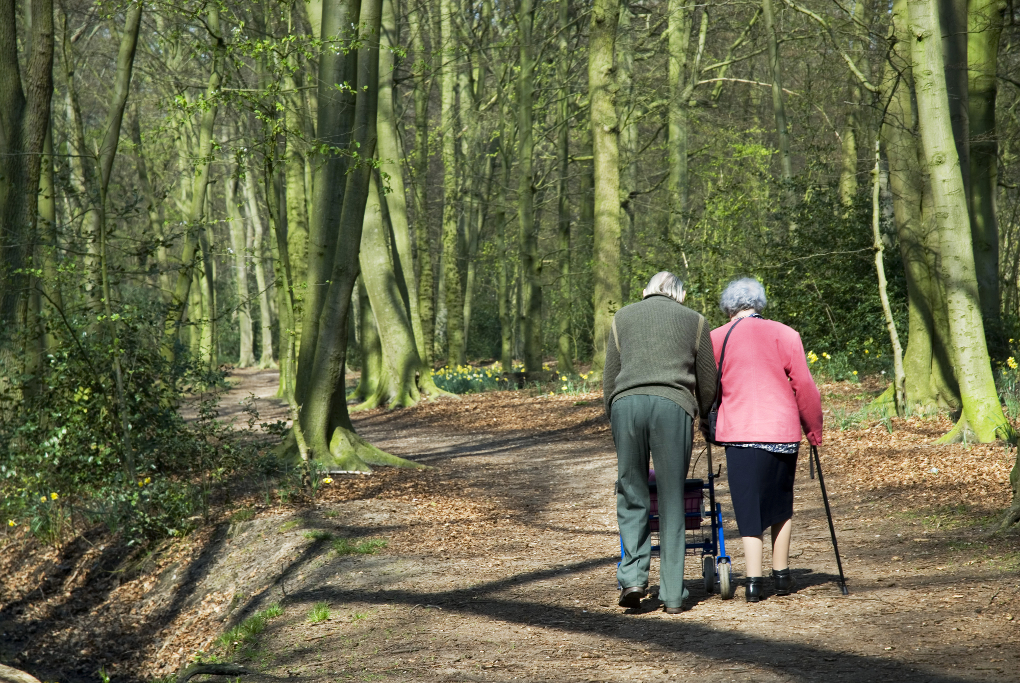 senior-care-arlington