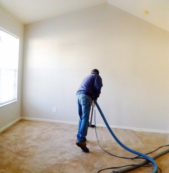 Carpet Cleaner Professional Cleaners Will First Vacuum