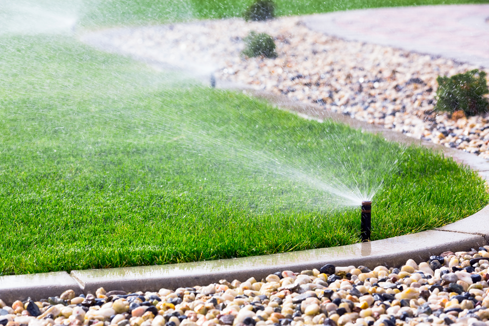 5 Questions to Ask a Sod Installation Expert - Turpin Farms