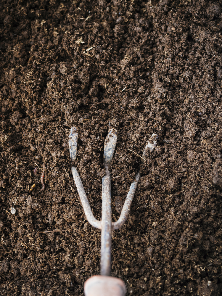 4 factors to look for in quality topsoil affordable for Quality topsoil