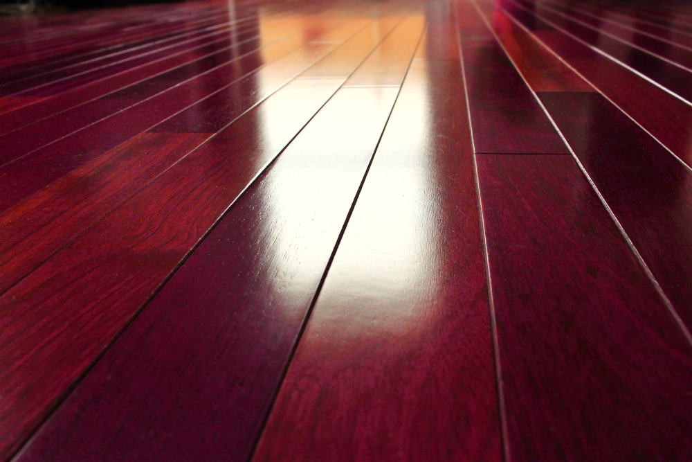 Do You Need To Recoat Your Wood Floor Floors Done Right Llc