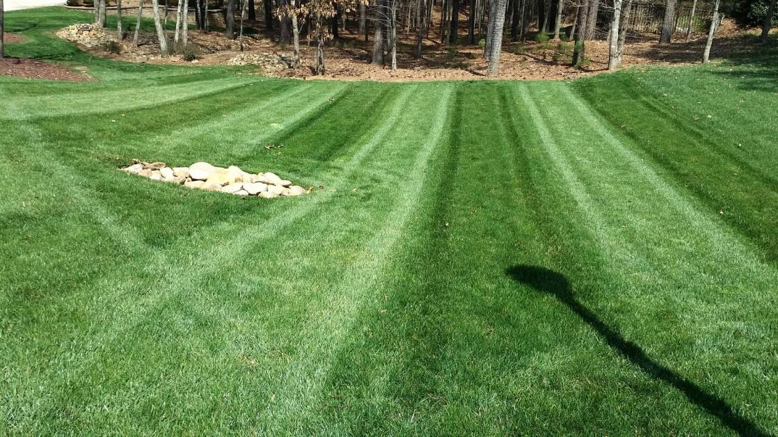 Lawn With Pre Emergent And Fertilizer