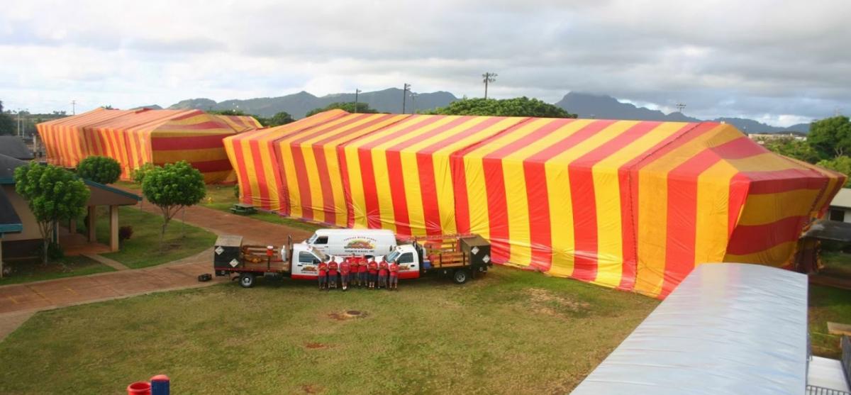 Aloha Termite Kauai, Inc  in Lihue, HI | NearSay