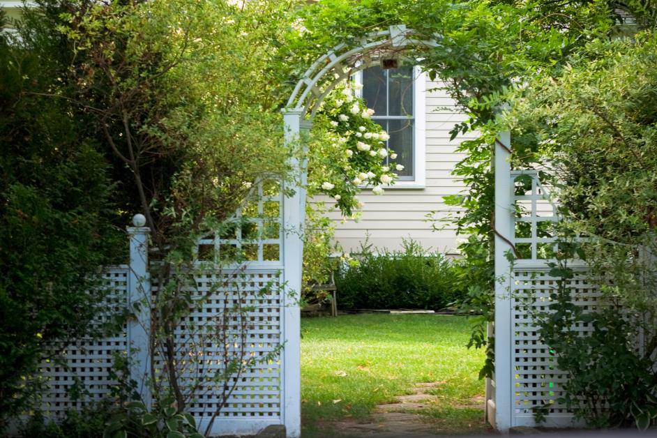 4 Do S Don Ts Of Decorating Your Fence With Vines Aaa Fence