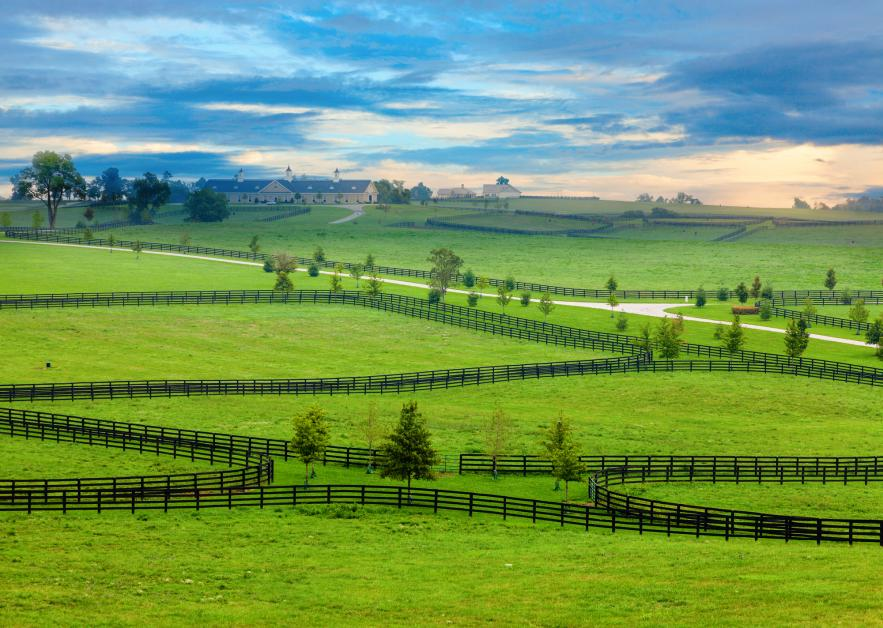 4 Pros & Cons of a Metal Pipe Fence - Heartland Fence Company