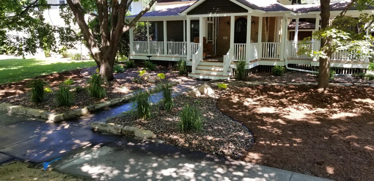 Top 10 Plants For A Beautiful Shade Garden River City Lawnscape