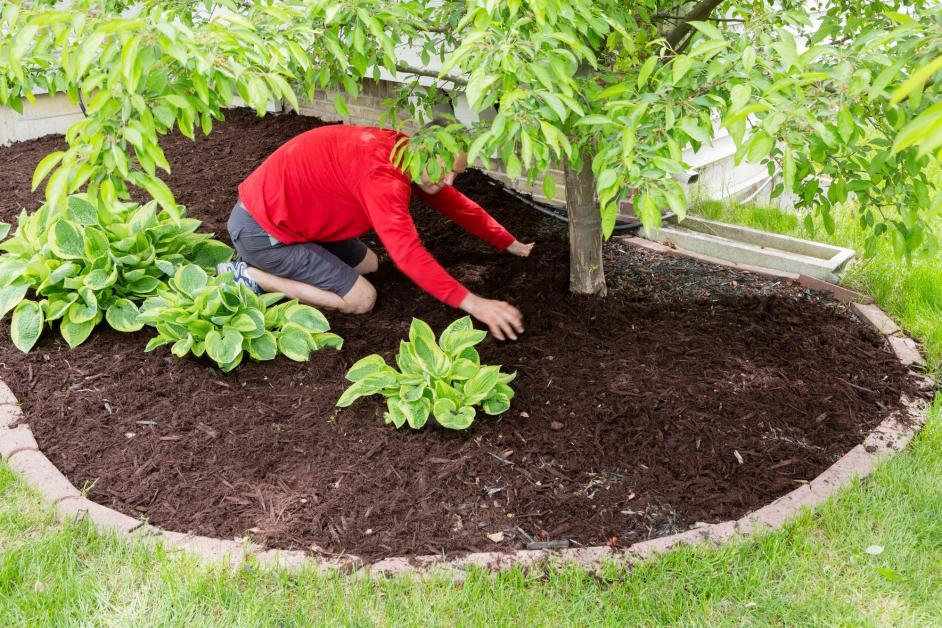 5 Types Of Organic Mulch Going Green Lawn Services Llc Fenton