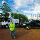 Backyard Monkey LLC, Tree Removal, Tree Service, Shrub and Tree Services, Mountain View, Hawaii