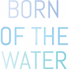 Born of the Water, Swimwear, Shopping, Honolulu, Hawaii
