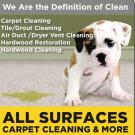 All Surfaces Carpet Cleaning & More, Air Duct Cleaning, Water Damage Restoration, Carpet Cleaning, Columbia, Missouri