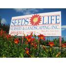 Seeds Of Life, Patio Builders, Landscaping, Landscape Design, Lincoln, Nebraska