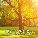 Valle Tree Service, Landscaping, Tree Removal, Tree Trimming Services, San Antonio, Texas