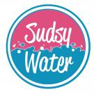 Sudsy Water, Laundry Services, Services, New York, New York