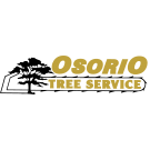 Osorio Tree Service, Tree Trimming Services, Services, Lagrangeville, New York