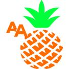 A.A. Oceanfront Condominium Rentals, Real Estate Services, Condominiums, Vacation Rentals, Kihei, Hawaii