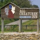 All Creatures Inn, Pet Boarding and Sitting, Services, Nicholasville, Kentucky