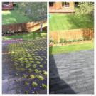 AK Curb Appeal, Pressure Washing, Home Repair and Service, Roofing, Anchorage, Alaska