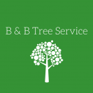 B & B Tree Service, Tree Service, Services, Cincinnati, Ohio