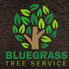 Bluegrass Tree Service, LLC, Shrub and Tree Services, Services, Florence, Kentucky