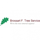Brossart F. Tree Service, Tree Service, Tree & Stump Removal, Tree Removal, Newport, Kentucky