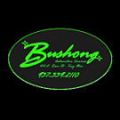 Bushong Automotive Service, Auto Maintenance, Auto Services, Auto Repair, Troy, Ohio