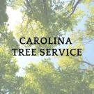 Carolina Tree Service, Shrub and Tree Services, Services, Burlington, North Carolina