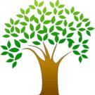 Barnhardt Landscape , Lawn Care Services, Landscape Design, Landscaping, Mount Pleasant, North Carolina
