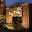 The Fig Tree Restaurant, Italian Restaurants, French Restaurants, Charlotte, North Carolina