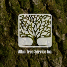 Allan Tree Service Inc., Tree Trimming Services, Tree Removal, Tree Service, Godfrey, Illinois
