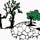 Garcia's LLC Lawn Care & Landscaping, Lawn Care Services, Tree Service, Landscaping, Indian Spring, Ohio