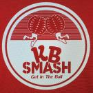 Knockerball Smash, Childrens Birthday Parties, Recreation Centers, Indoor Sports, Chesterfield, Missouri