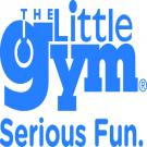 The Little Gym of Interbay, Childrens Birthday Parties, Kids Camps, Kids Gyms, Seattle, Washington