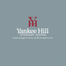 Yankee Hill Veterinary Hospital, Pet Boarding and Sitting, Veterinary Services, Veterinarians, Lincoln, Nebraska