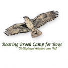 Roaring Brook Camp for Boys, Kids Camps, Family and Kids, Bradford, Vermont