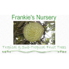 Frankie's Nursery LLC Tropical Fruit Trees Specialist, Organic Food, Garden Centers, Nurseries & Garden Centers, Waimanalo, Hawaii