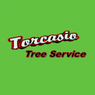 Torcasio Tree Services, Land Clearing, Tree Removal, Tree Service, Danbury, Connecticut
