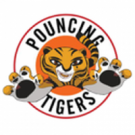 Pouncing Tigers, Inc., Self Defense Classes, Karate, Martial Arts, New York, New York