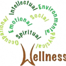 The Practice of Health and Wellness, Health & Wellness Centers, Holistic & Alternative Care, Primary Care Doctors, Thomaston, Connecticut