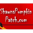 Shawns Pumpkin Patch, Amusement & Theme Parks, Los Angeles, California